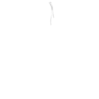 Woman pants Semi-rubber band